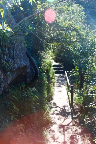 This trail was so well maintained, had handrails and all. Really neat rock formations to check out too!