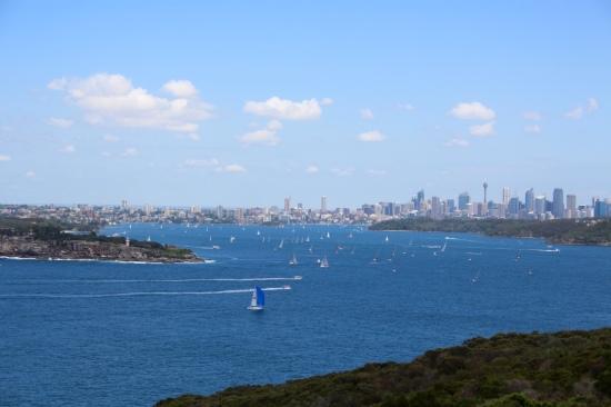 Fairfax Lookout views.