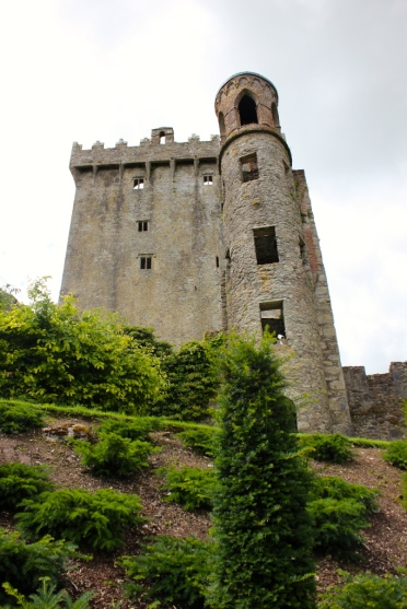 Beautiful Blarney standing tall.